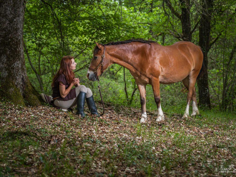 symphonie-estivale-serie-photo-equestre-franck-simon-photographe-équestre-et-animalier-charente-1