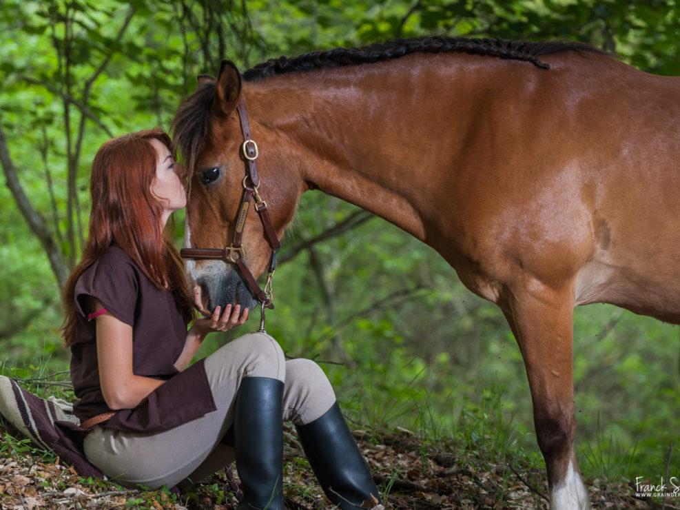 symphonie-estivale-série-photo-equestre-franck-simon-photographe-équestre-et-animalier-charente-1