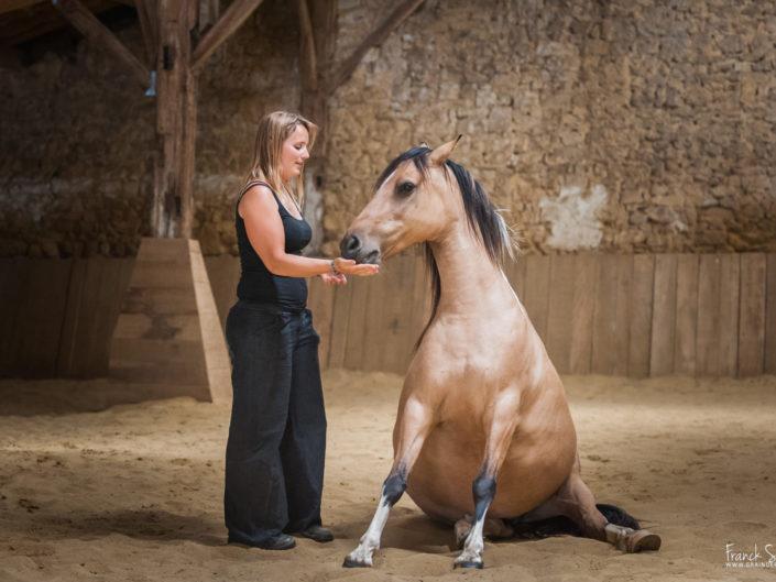 au-pré-des-chevaux-grain-de-pixel-photographe-equestre-animalier-2