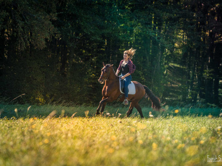 Camille-Jabu-PRE-séance-photo-cavalier-franck-simon-graindepixe.fr-photographe-animalier-6