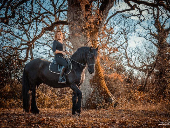 nelt-kees-frison-séance-cavalier-equestre-franck-simon-photographe-équestre-et-animalier-charente-8