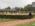 Ecole-nationale-equitation-saumur-ENE-grain-de-pixel-photographe-equestre
