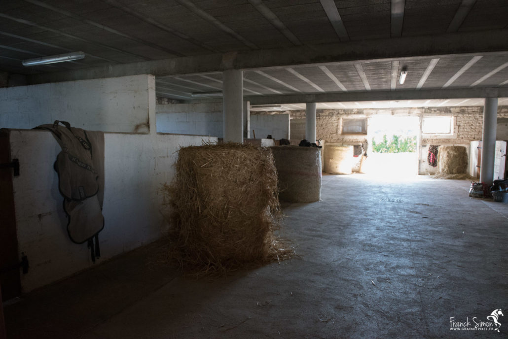 equites-logis-rancogne-grain-de-pixel-photographe-equestre-animalier-1-infrastructure-equestre