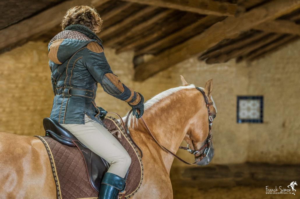 charles-de-nevel-grain-de-pixel-photographe-equestre-et-animalier