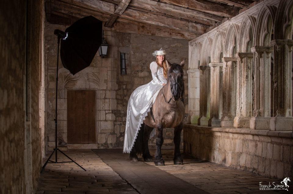 backstage-force-tranquille-trait-poitevin-la-rochefoucauld-franck-simon-grain-de-pixel-photographe-equestre-et-animalier-31