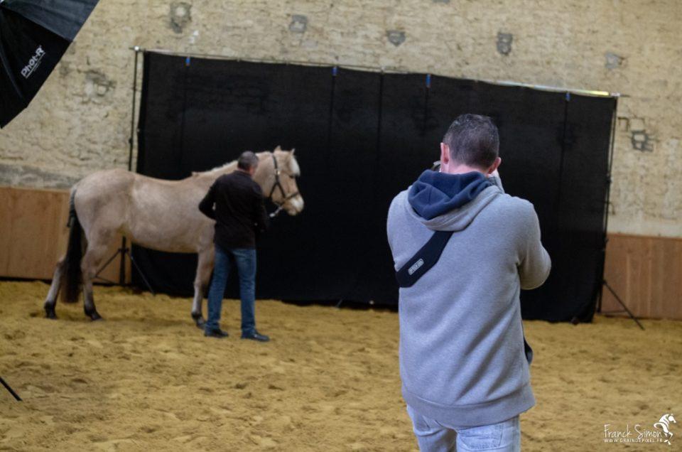 studio-cheval-equites-grain-de-pixel-photographe-equestre-8
