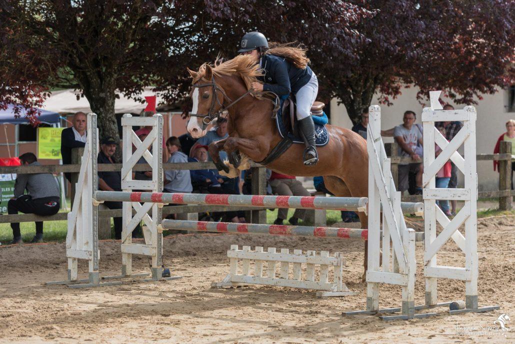 cso-oxer-grain-de-pixel-photographe-equestre-animalier