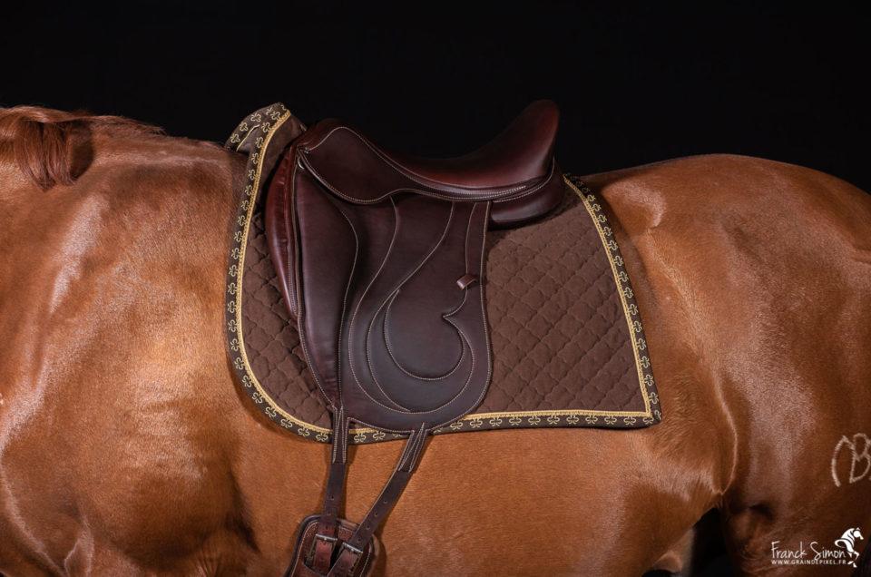 antares-sellier-Cheval-bavard-novembre-2019-grain-de-pixel--photographe-equestre-cuir-sellerie