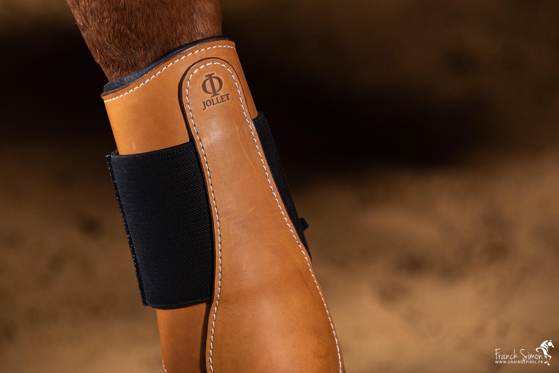 Cheval-bavard-novembre-2019-grain-de-pixel--photographe-equestre-cuir-sellerie-jollet-atelier