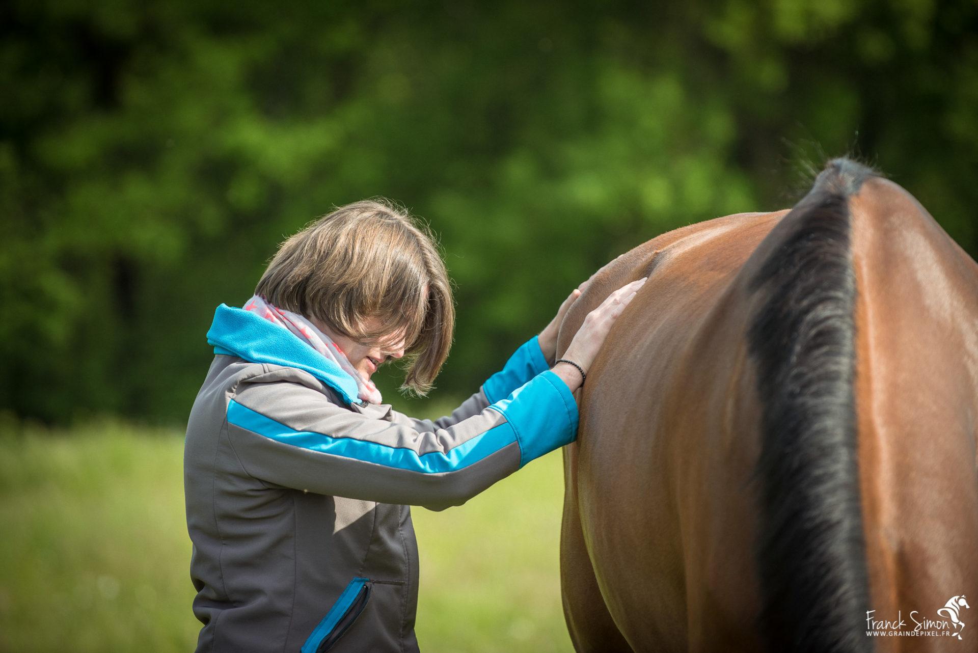 Animolistic -  ostéopathie et chevaux