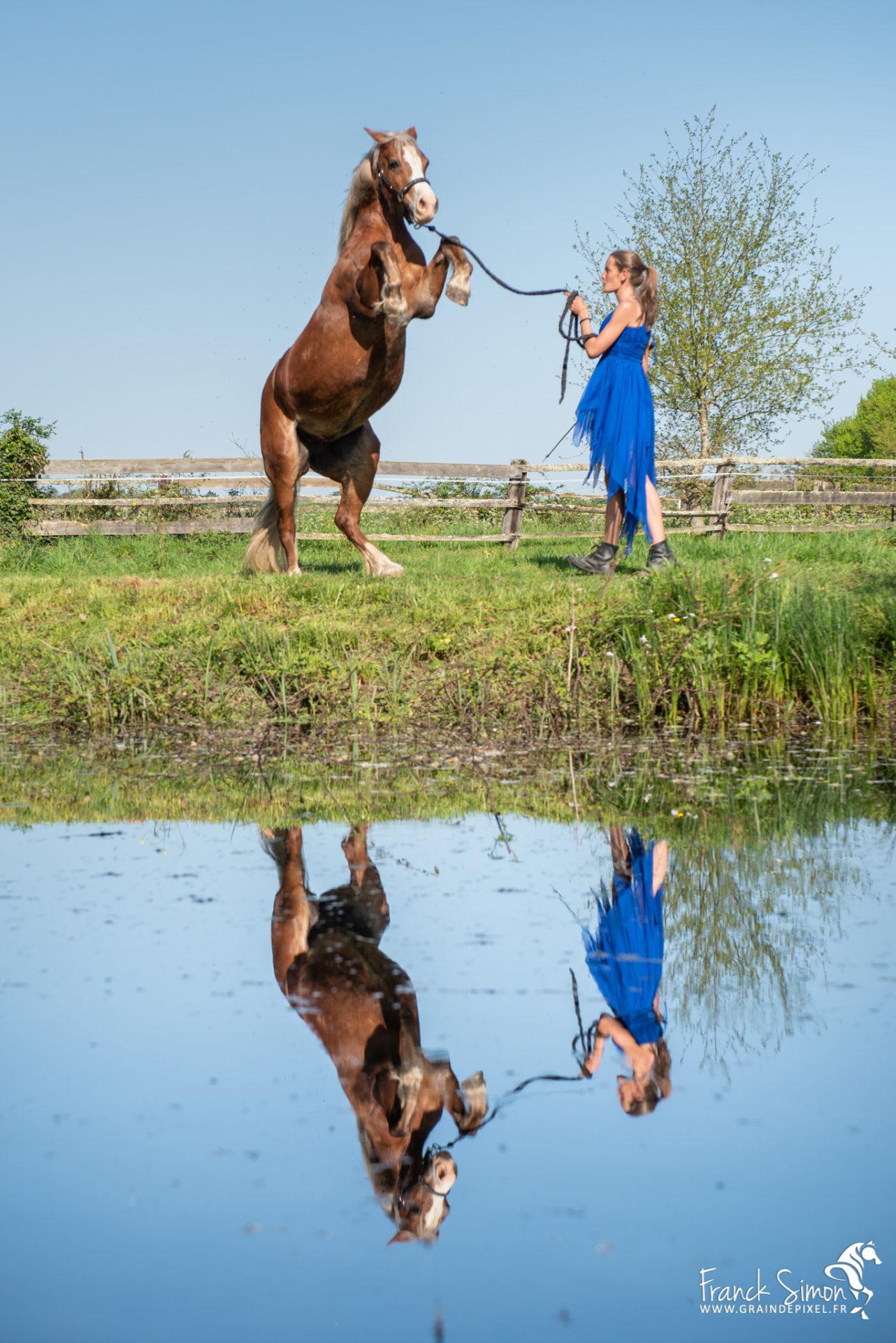 Aurore et ses poneys, Ecurie de Mark