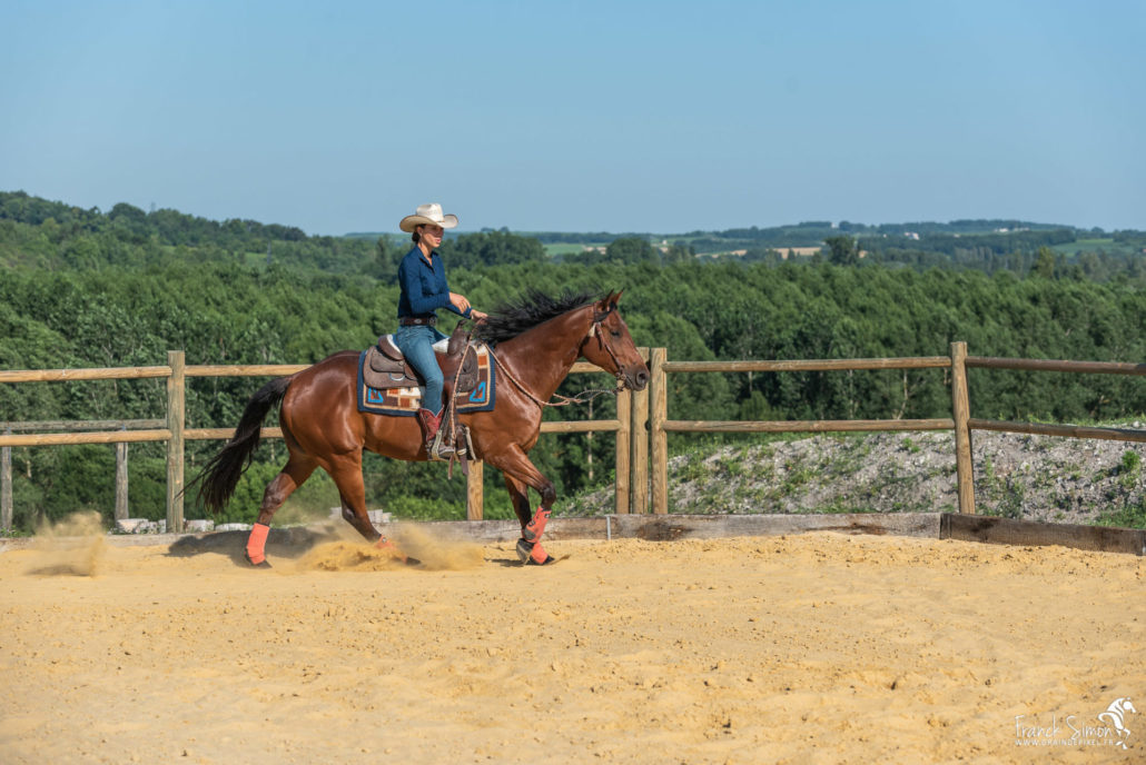 ecurie-grand-guillon-ladiville-franck-simon-grain-de-pixel-photographe-equestre-et-animalier-