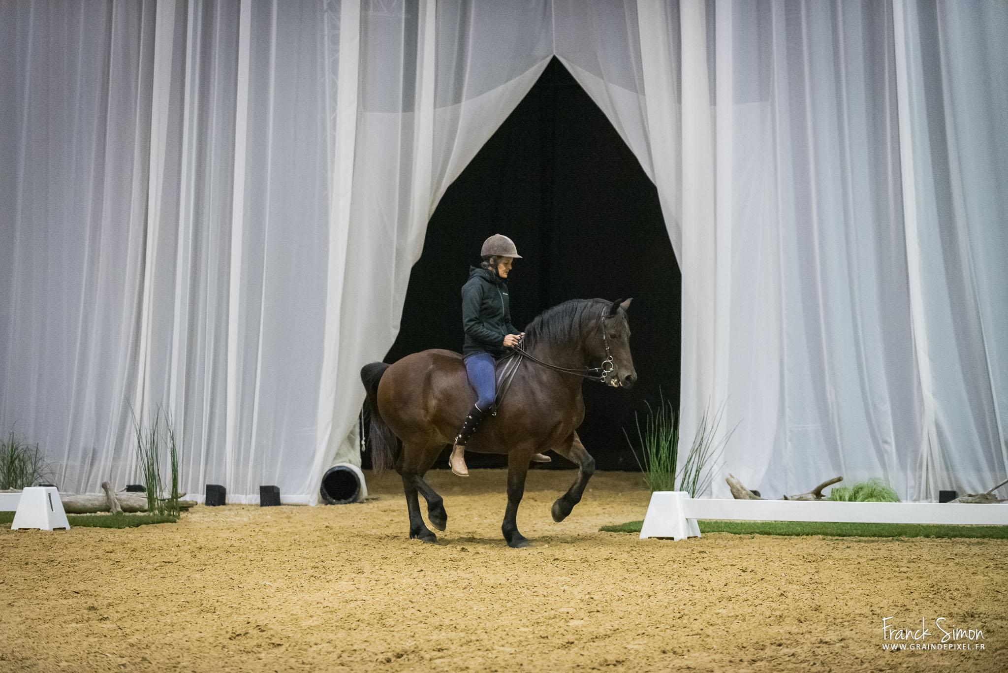 Rencontre de l'équitation française à l'ENE – Cadre Noir de Saumur