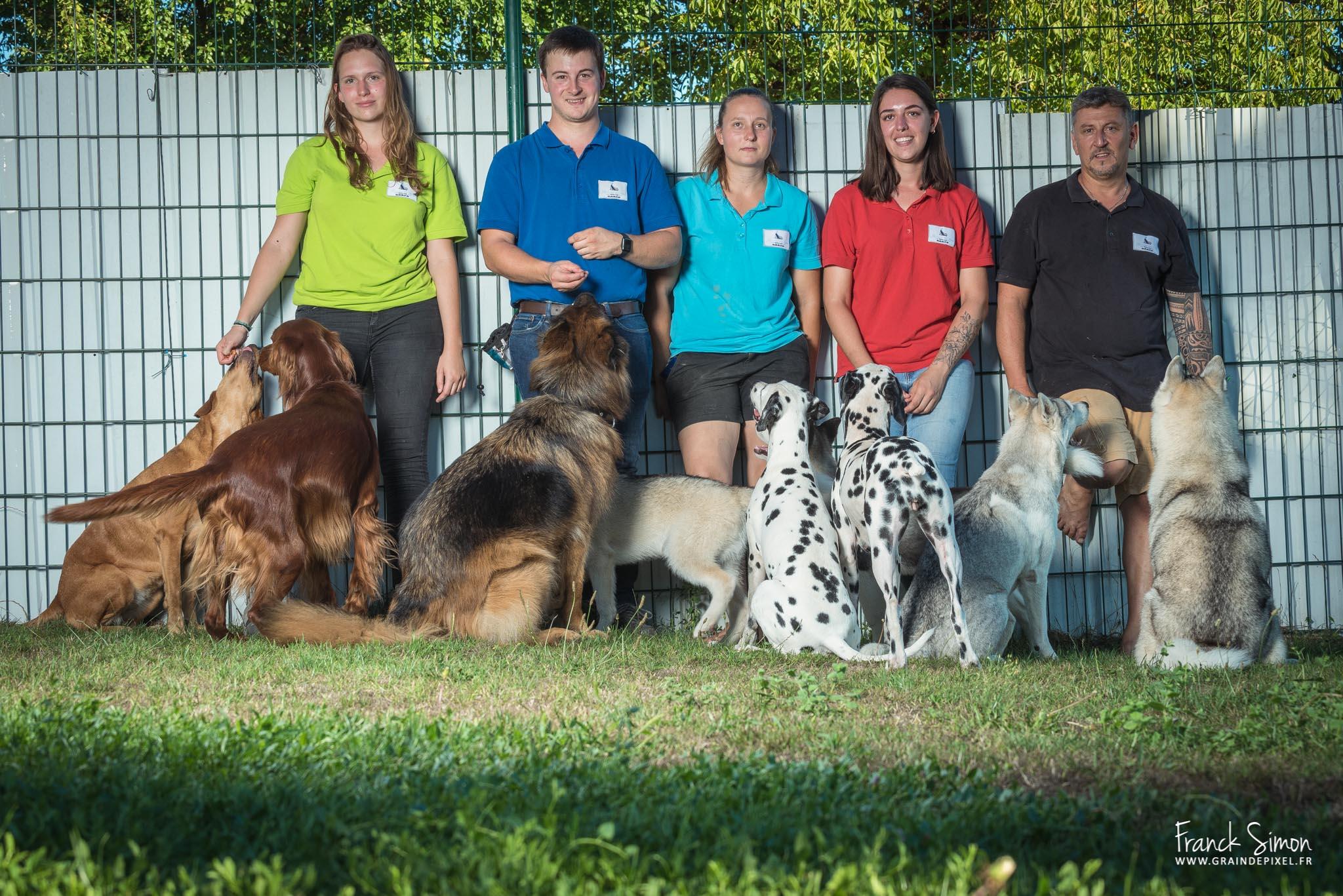 Au coeur des chiens : des éducateurs canins au top !