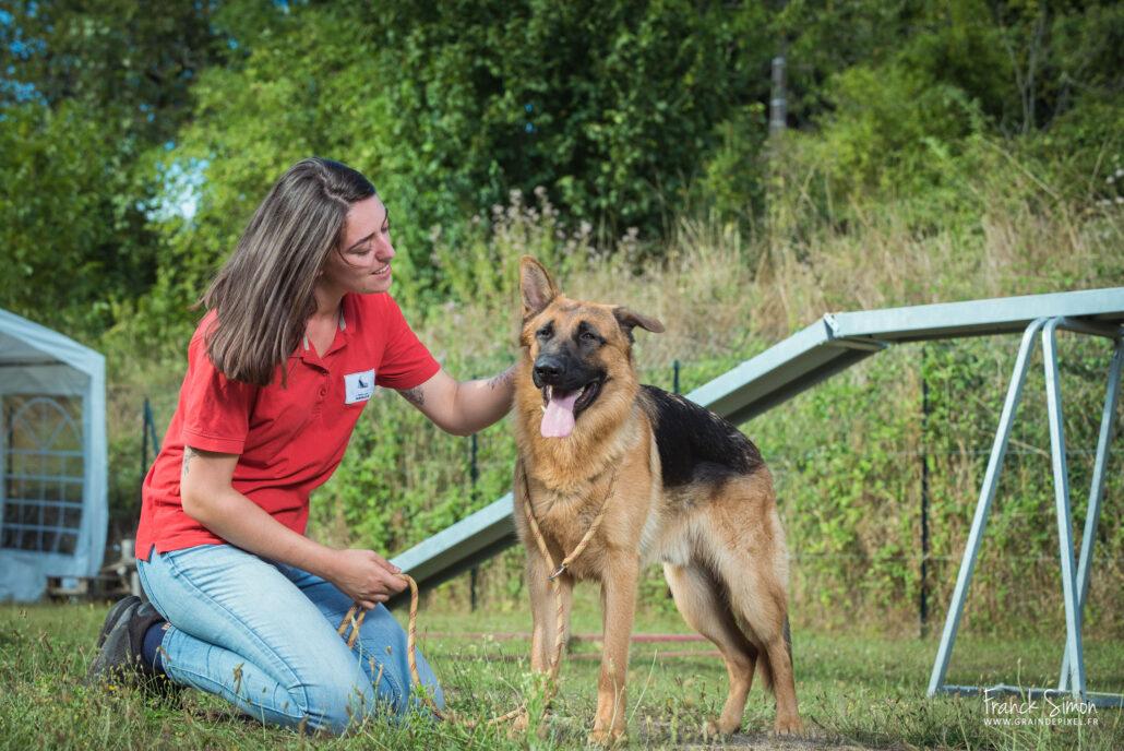 Au coeur des chiens -education canine-equipe- - Grain de Pixel, photographe animalier en Charente-6